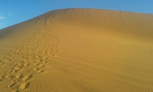 day trips from Marrakech , morocco desert tours