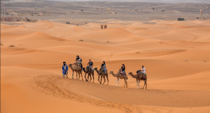 merzouga desert morocco