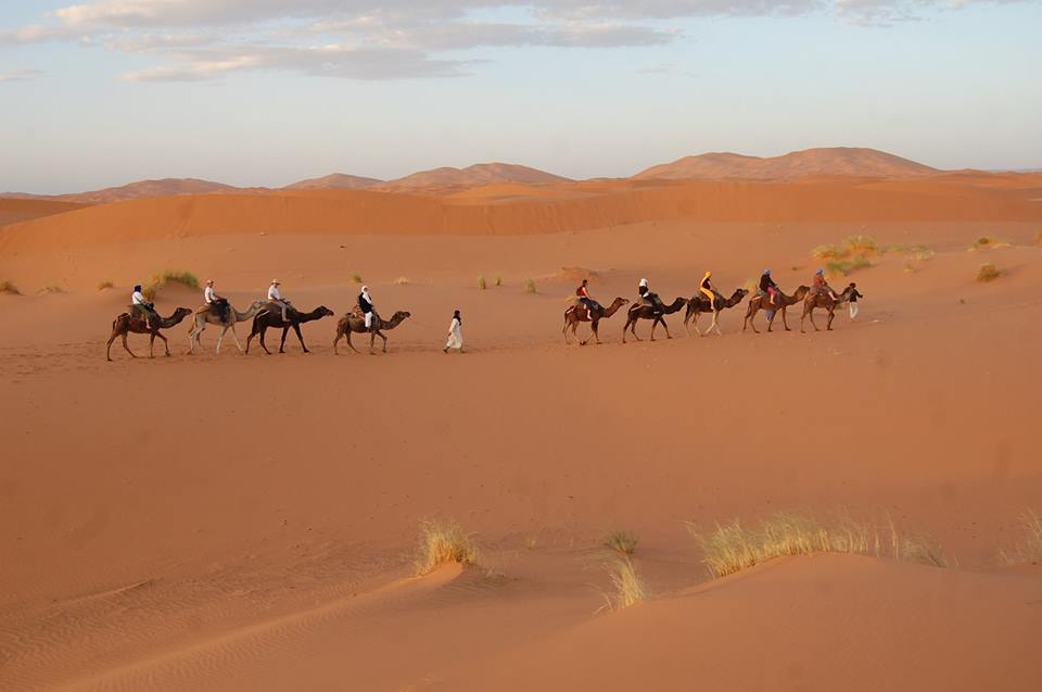 desert family tours